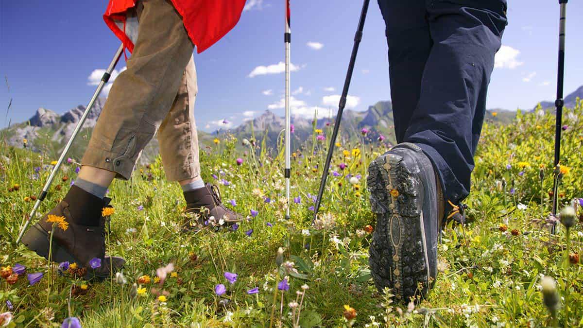 Nordic Walking túra és erdei meditáció ajándékba