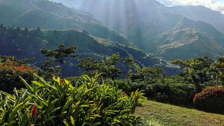 Változatos Vadvilág És Pura Vida – Costa Rica Multikaland 2022.Febr.10-22.