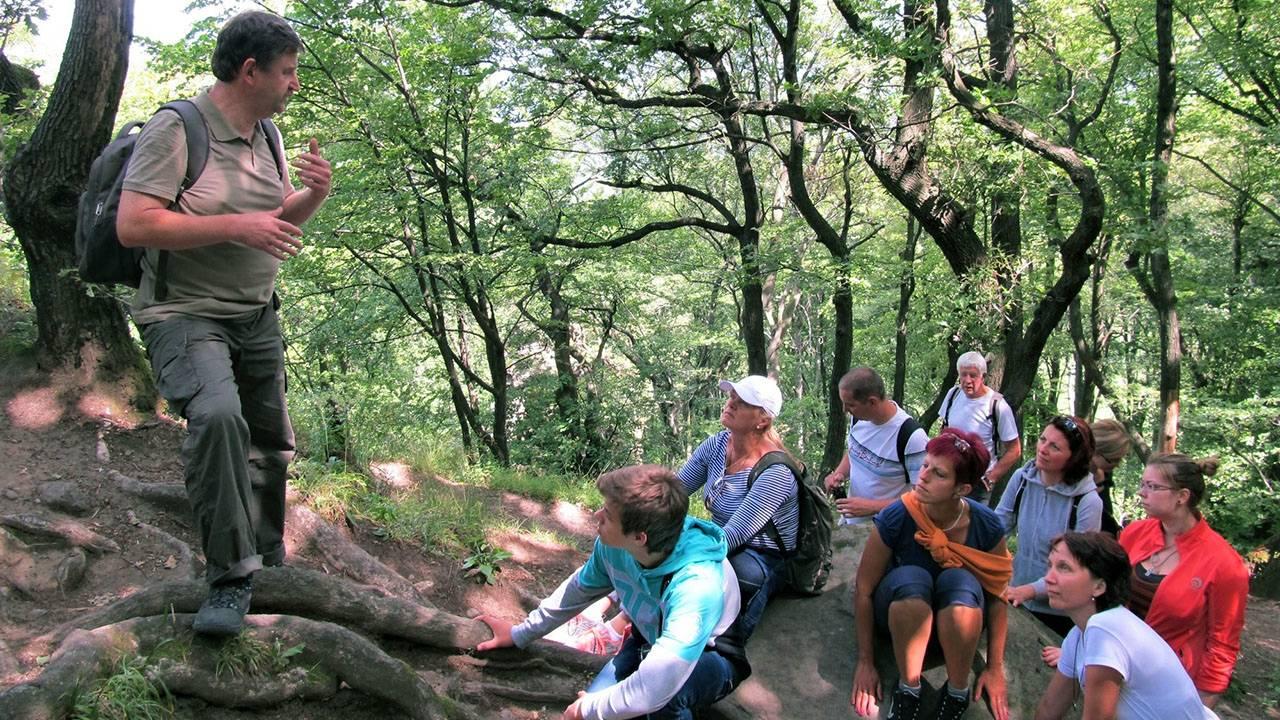 Varázslatos túrázás Dobogókőn hegyen-völgyön