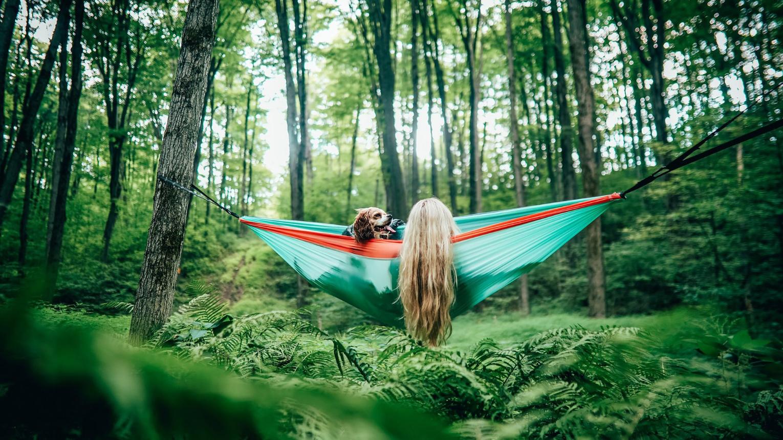 Falatozós,lazulós függőágyas piknik Dobogókőn
