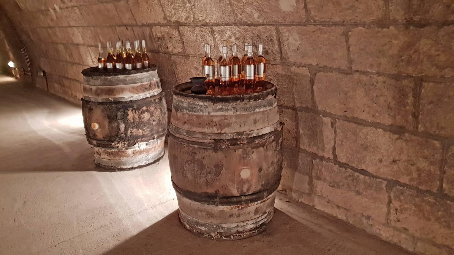 Holdvölgy pincelátogatás és kóstolóséta exkluzív borsorral