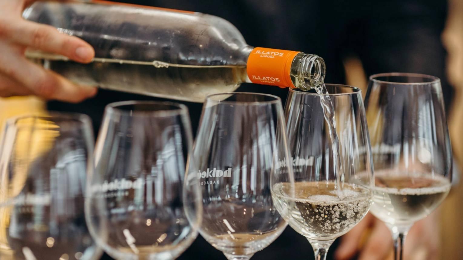 LAPOSA Borászatban üzemlátogatás és 1 fajta pezsgő és 2 fajta bor kóstolása