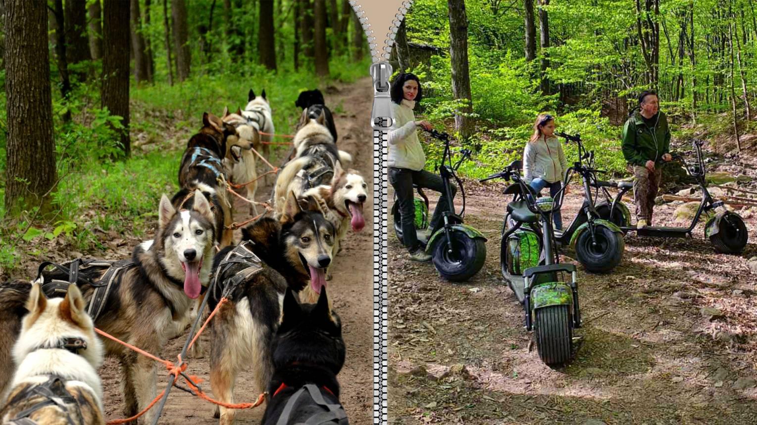 Standard Husky kutyafogat túra és utána E-scooter kalandozás a Mátrában