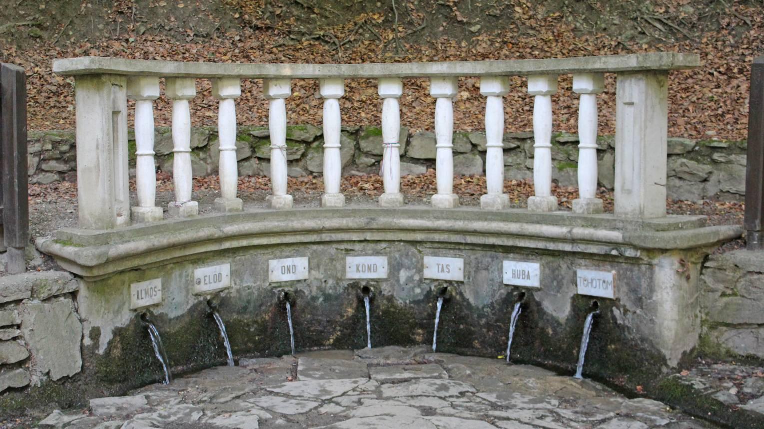 Balatonfüreden KOLOSKA segwaytúra középhaladóknak
