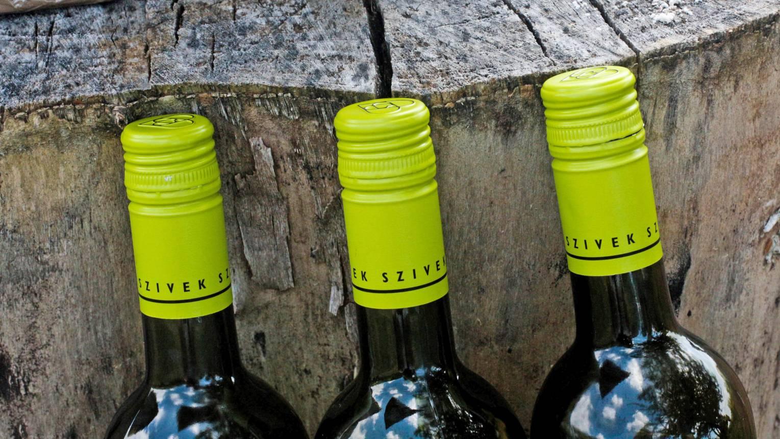 Kesztölci Szívek pincészeti borkóstoló - 6 boros