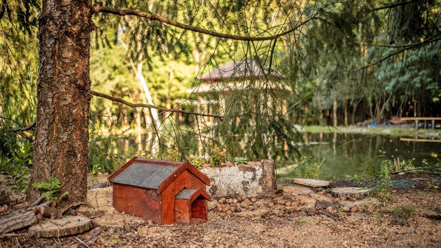 Erdőszéli kuckóban, tóparton kettesben Cserkeszőlőn