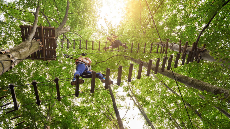 Kalandtúra a Sárga(Liliputi) gyerekpályán a Zemplén Kalandparkban
